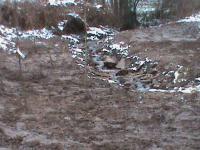 Marnay /Pont d'ajou/ruisseau rouge