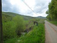 Broye - Ruisseau de la Papeterie