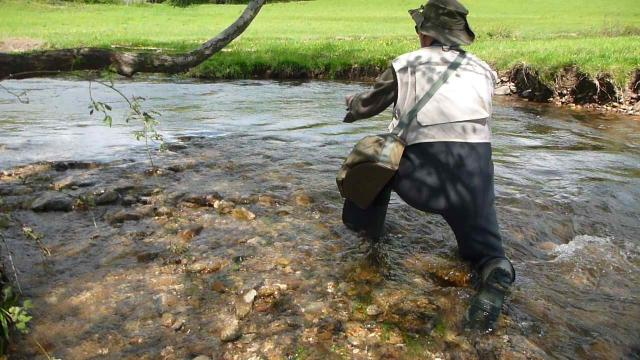 Séance de pêche à la mouche